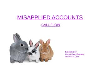 Misapplied Discounts_Call Analysis.ppt
