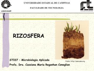 Aula5_Rizosfera.pdf