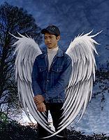 adelawar broken angel.jpg