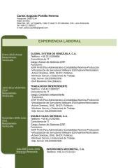CurriculumCarlosPortilloInternacional.docx