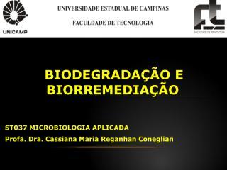 Aula7_Biodegradacao_Biorremediacao.pdf